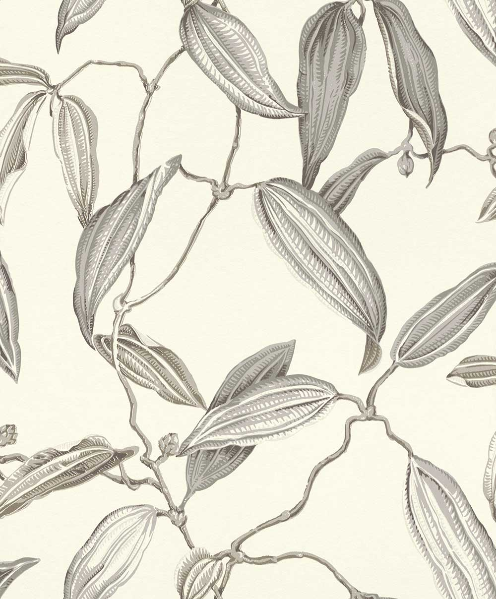 Albany Cocoa Pod Grey Wallpaper - Product code: 525717