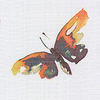 iliv Avila Cinnamon Fabric - Product code: CIAA/AVILACIN