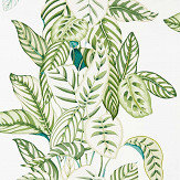 Sanderson Calathea Botanical Green Wallpaper