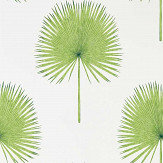 Sanderson Fan Palm Botanical Green Wallpaper