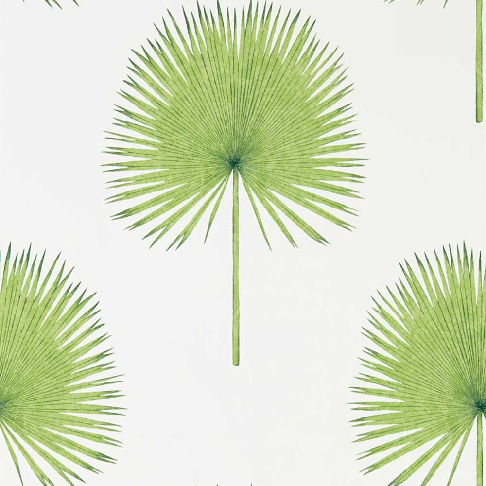 Sanderson Fan Palm Botanical Green Wallpaper - Product code: 216636
