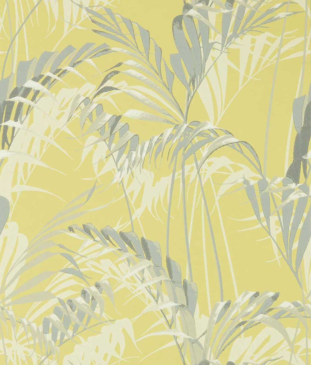 Sanderson Palm House Chartreuse / Grey Wallpaper main image