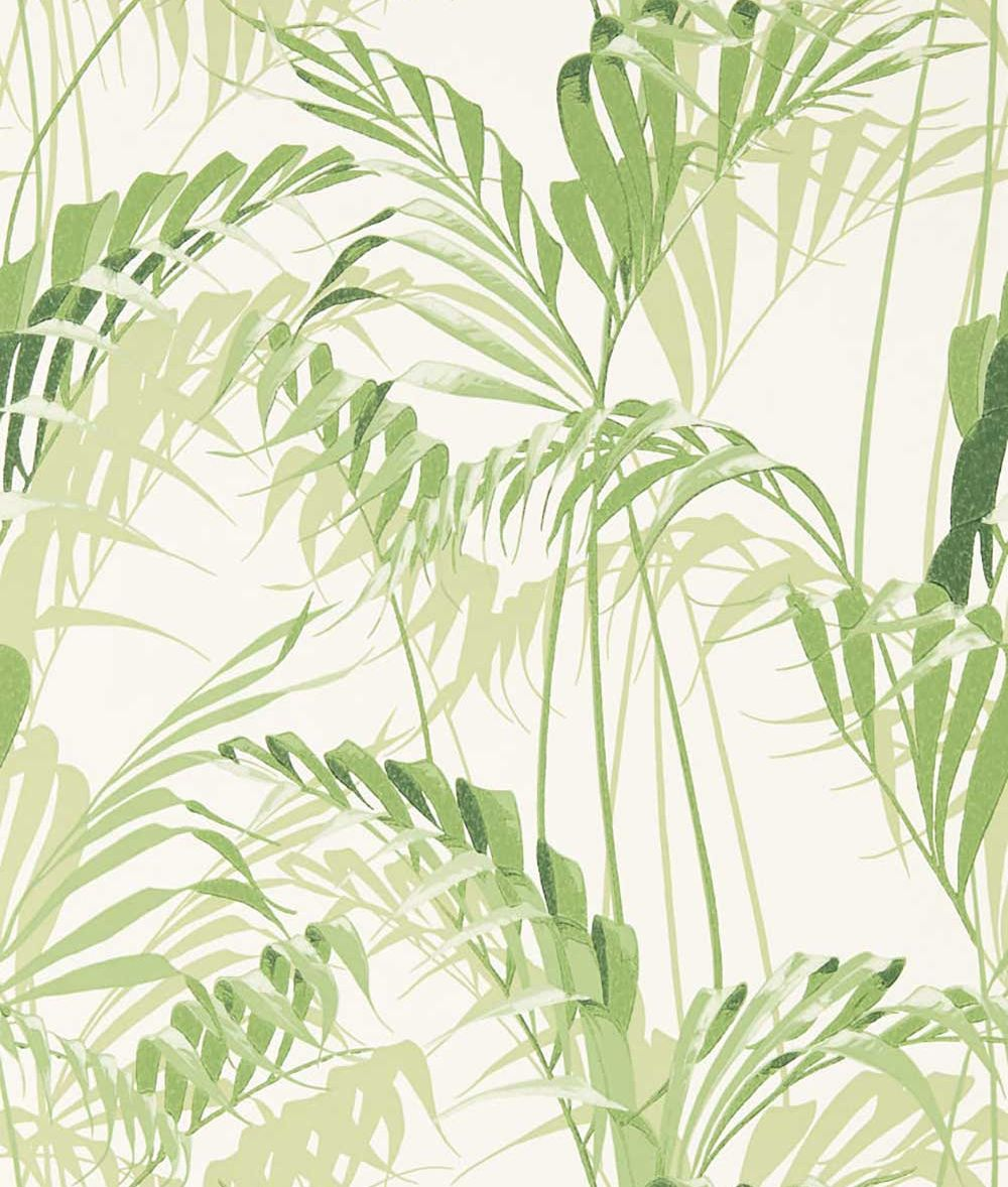 Sanderson Palm House Botanical Green Wallpaper main image