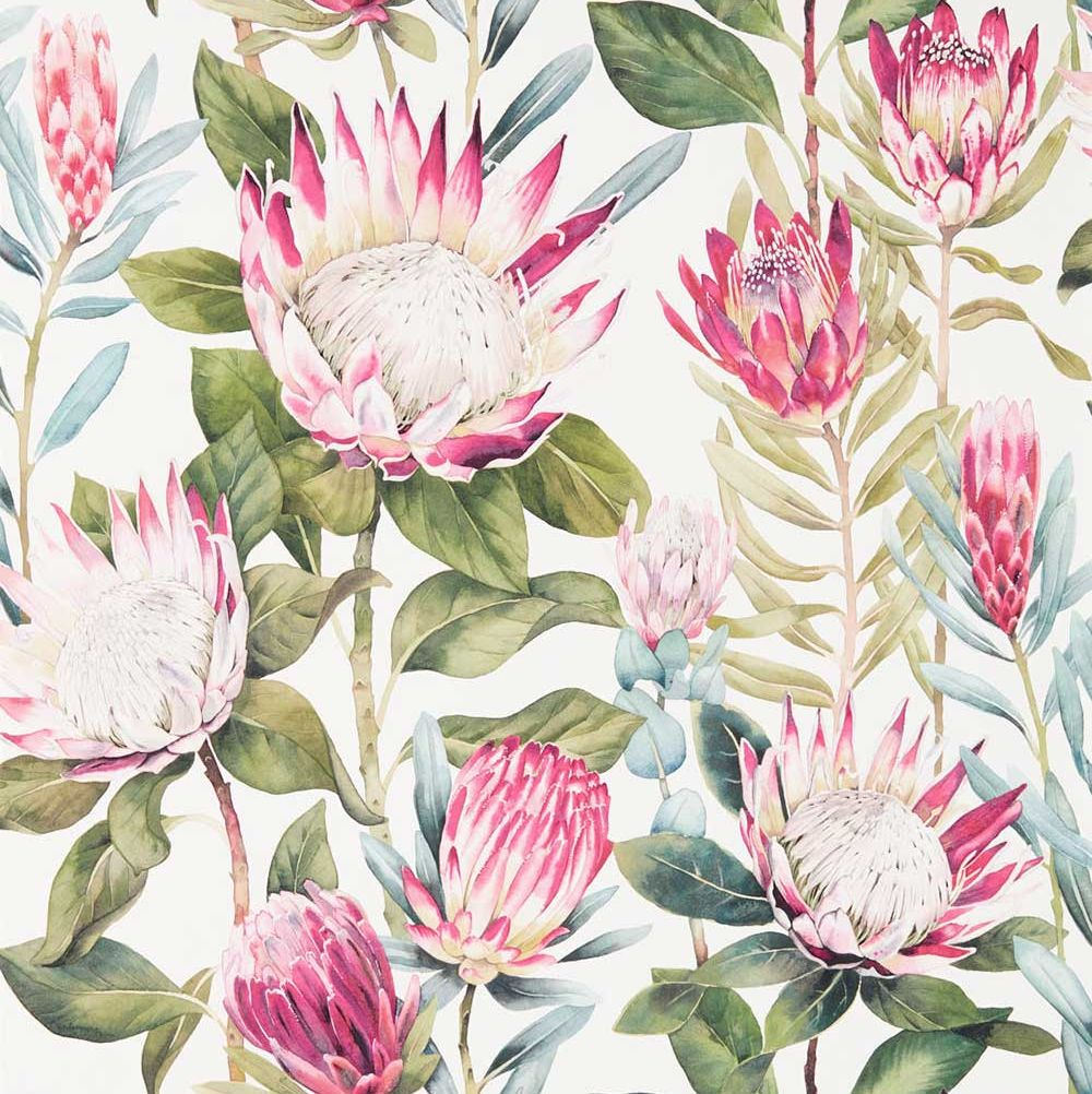 Sanderson King Protea Rhodera / Cream Wallpaper - Product code: 216646