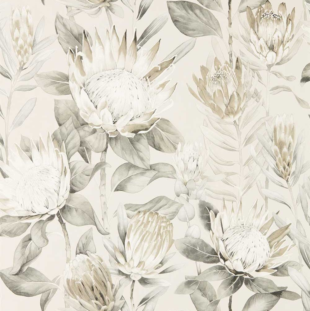 Sanderson King Protea Linen / Mica   Wallpaper - Product code: 216647
