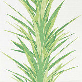 Sanderson Yucca Botanical Green Wallpaper - Product code: 216649