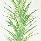 Sanderson Yucca Botanical Green Wallpaper
