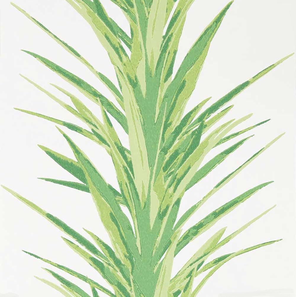 Sanderson Yucca Botanical Green Wallpaper - Product code: 216649