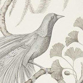 Sanderson Bird of Paradise Linen Wallpaper