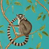 Sanderson Ringtailed Lemur Teal Wallpaper - Product code: 216663
