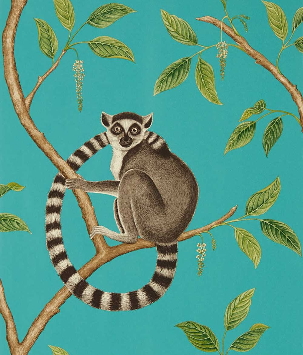 Sanderson Ringtailed Lemur Teal Wallpaper main image