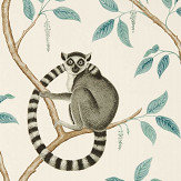 Sanderson Ringtailed Lemur Stone / Eucalyptus Wallpaper - Product code: 216665