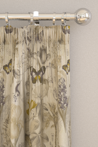 Clarke & Clarke Botany Charcoal / Chartreuse Curtains - Product code: F1297/01