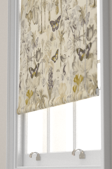 Clarke & Clarke Botany Charcoal / Chartreuse Blind - Product code: F1297/01