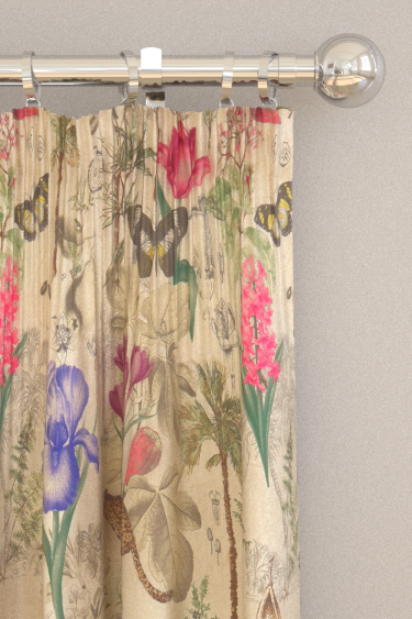 Clarke & Clarke Botany Summer Curtains - Product code: F1297/02