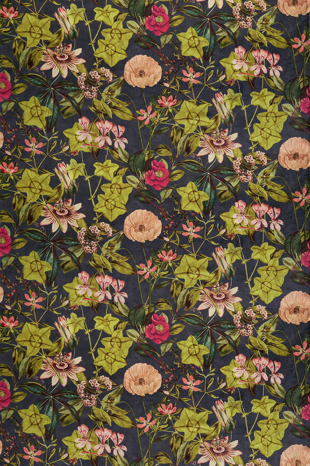 Clarke & Clarke Passiflora Midnight / Spice Fabric - Product code: F1304/03