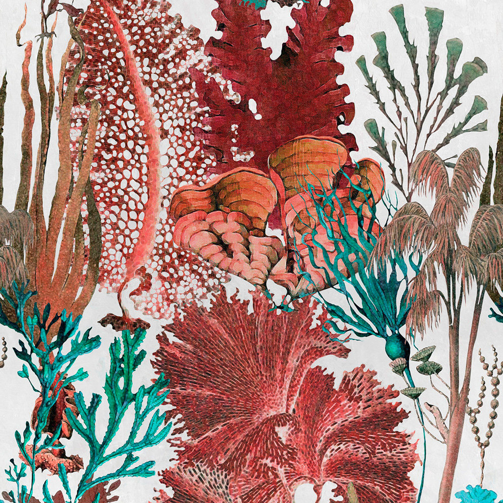 Mind the Gap Coral Reef set of 3 panels Red Mural - Product code: WP20299