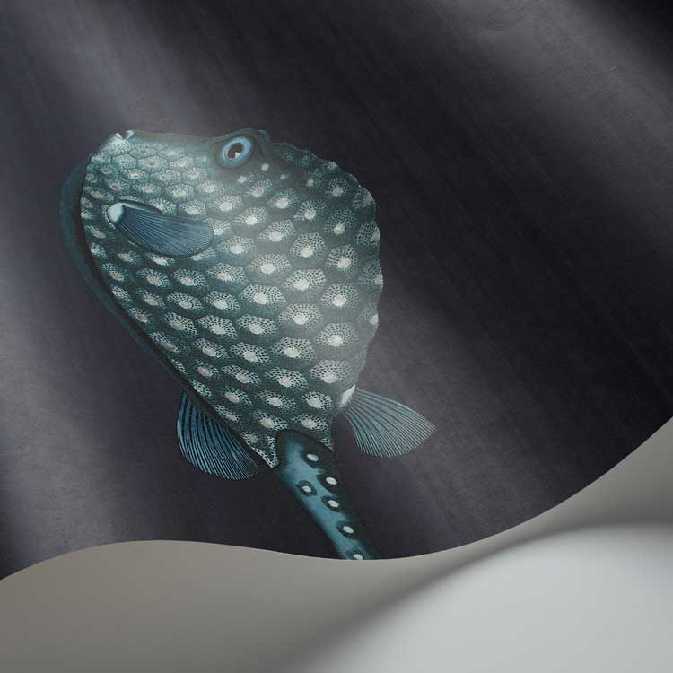 Acquario Wallpaper - Ink - by Cole & Son