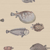 Cole & Son Acquario Taupe Wallpaper - Product code: 114/16033