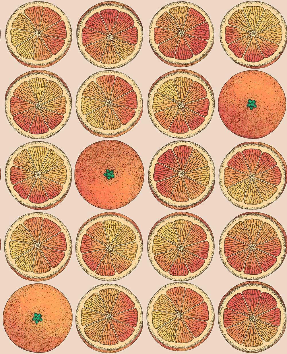 Cole & Son Arance Orange / Stone Wallpaper - Product code: 114/24047