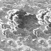 Cole & Son Nuvolette Black / White Wallpaper