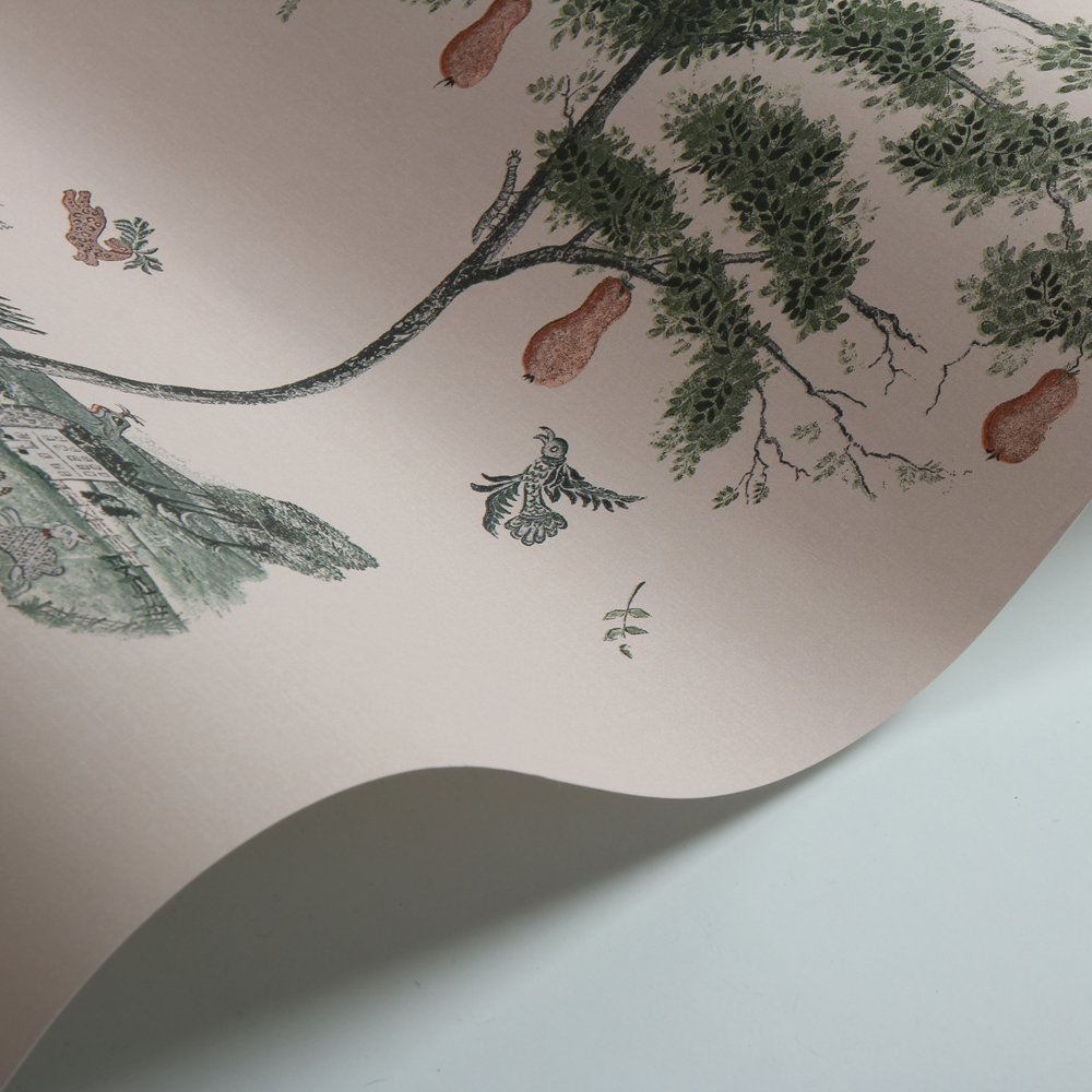 Pear Tree Wallpaper - Setting Plaster - by Andrew Martin