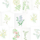 Coordonne Botanika White Mural - Product code: 7800994