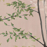 Coordonne Woods Dusky Pink Mural - Product code: 7800997