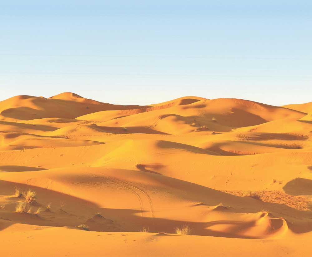 Desert Landscape Border - Blue - by SK Filson