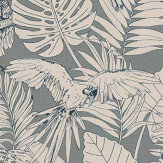 Albany Parrot Jungle Green Wallpaper - Product code: 447835