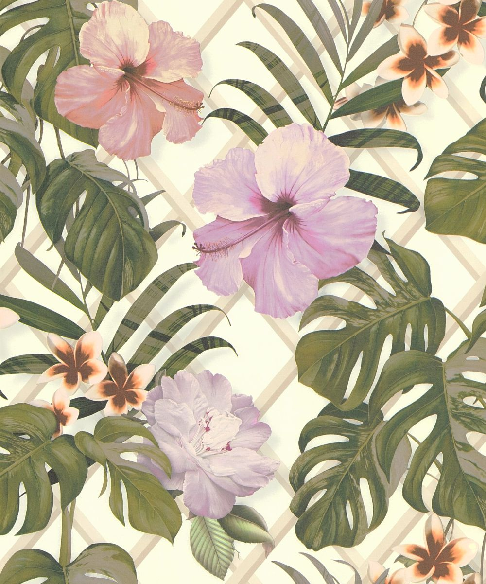 Tropical Flower By Albany Pink Green Wallpaper Direct