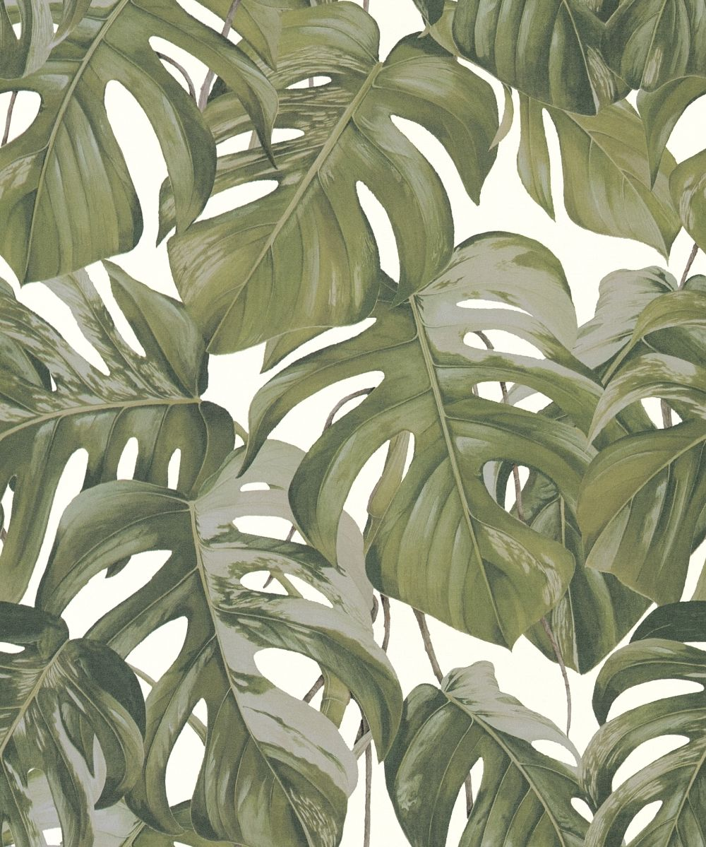 Albany Jungle Leaves Green Wallpaper - Product code: 36519-2