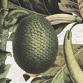Mind the Gap Exotic Fruit I Green Mural - Product code: WP20097