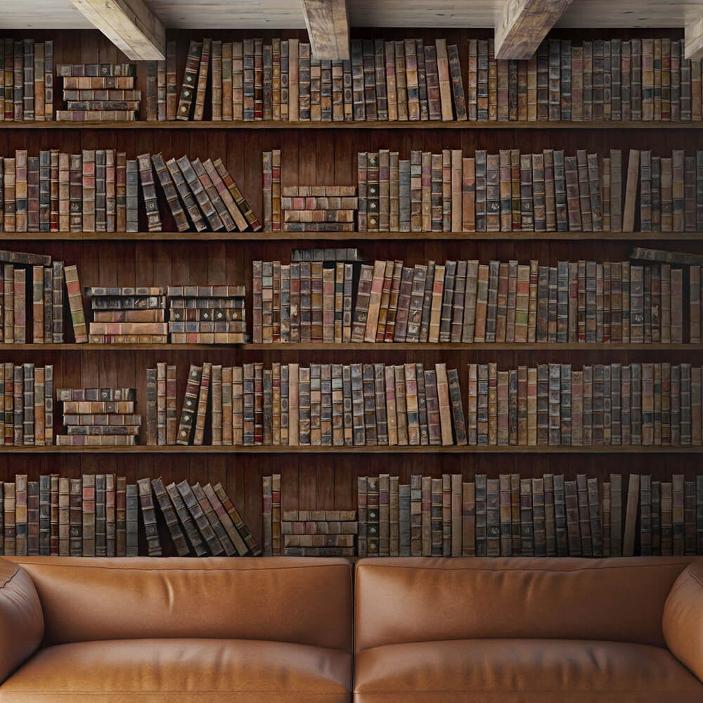 Book Shelves Mural - Brown - by Mind the Gap