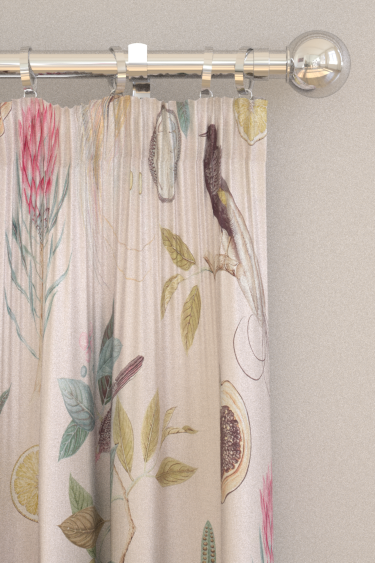 Sanderson Paradesia Orchid / Grey Curtains - Product code: 226566