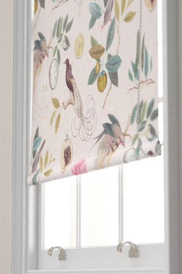 Sanderson Paradesia Orchid / Grey Blind - Product code: 226566