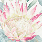 Sanderson King Protea Orchid / Grey Fabric - Product code: 226574