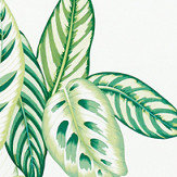 Sanderson Calathea Botanical Green Fabric - Product code: 226575