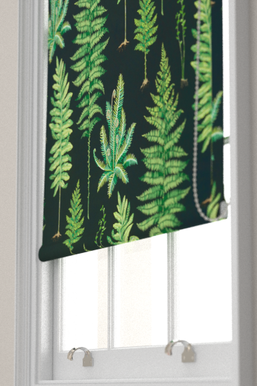 Sanderson Fernery Botanical Green / Charcoal Blind - Product code: 226577