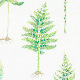 Sanderson Fernery Botanical Green Fabric - Product code: 226579