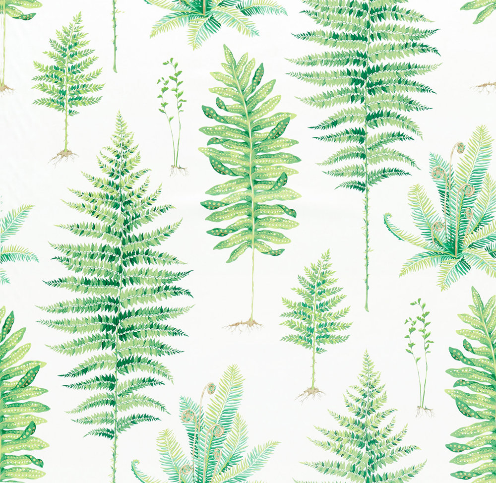 Sanderson Fernery Botanical Green Fabric - Product code: 226579