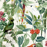 Albany Ikala Parrot Multi Coloured Wallpaper - Product code: 576204