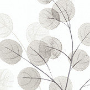 Albany Natasha Grey Wallpaper - Product code: 8991