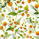 Isabelle Boxall Globosa Orange Wallpaper - Product code: IB5002