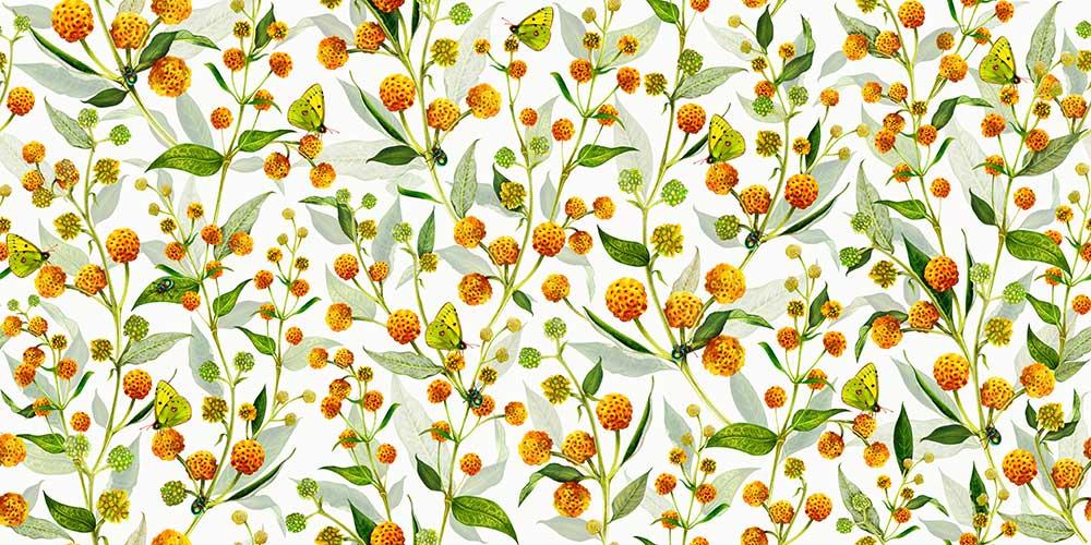 Isabelle Boxall Globosa Wallpaper - Product code: IB5002