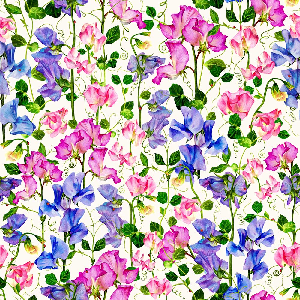 Isabelle Boxall Sweet Pea Wallpaper - Product code: IB5006
