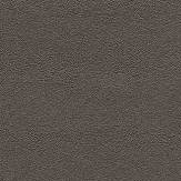 Eijffinger Brush Brown Wallpaper - Product code: 394501