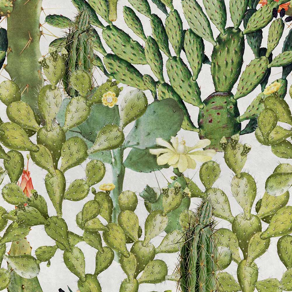 Mind the Gap Opuntia Green / White Mural - Product code: WP20166