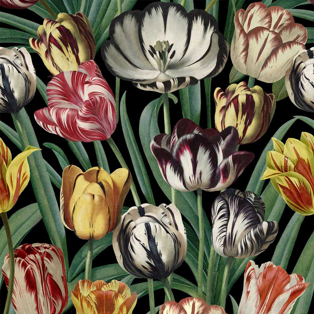 Mind the Gap Tulipa Multi-coloured Mural - Product code: WP20178