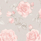 Albany Rosa Blush Wallpaper - Product code: 9766